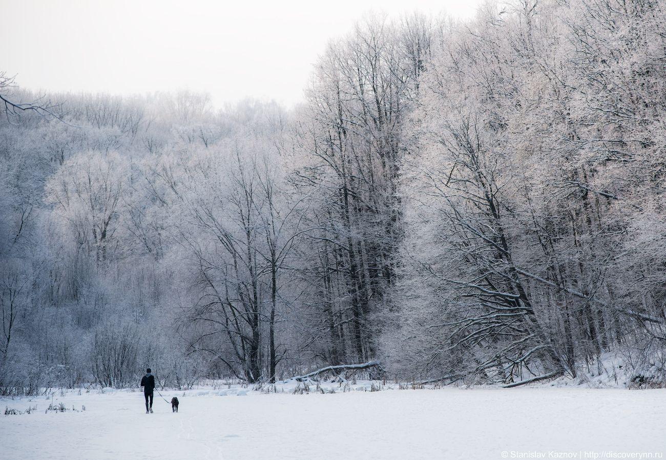 Зима на Щелоковском хуторе Н.Новгород пейзаж зима лес снег иней
