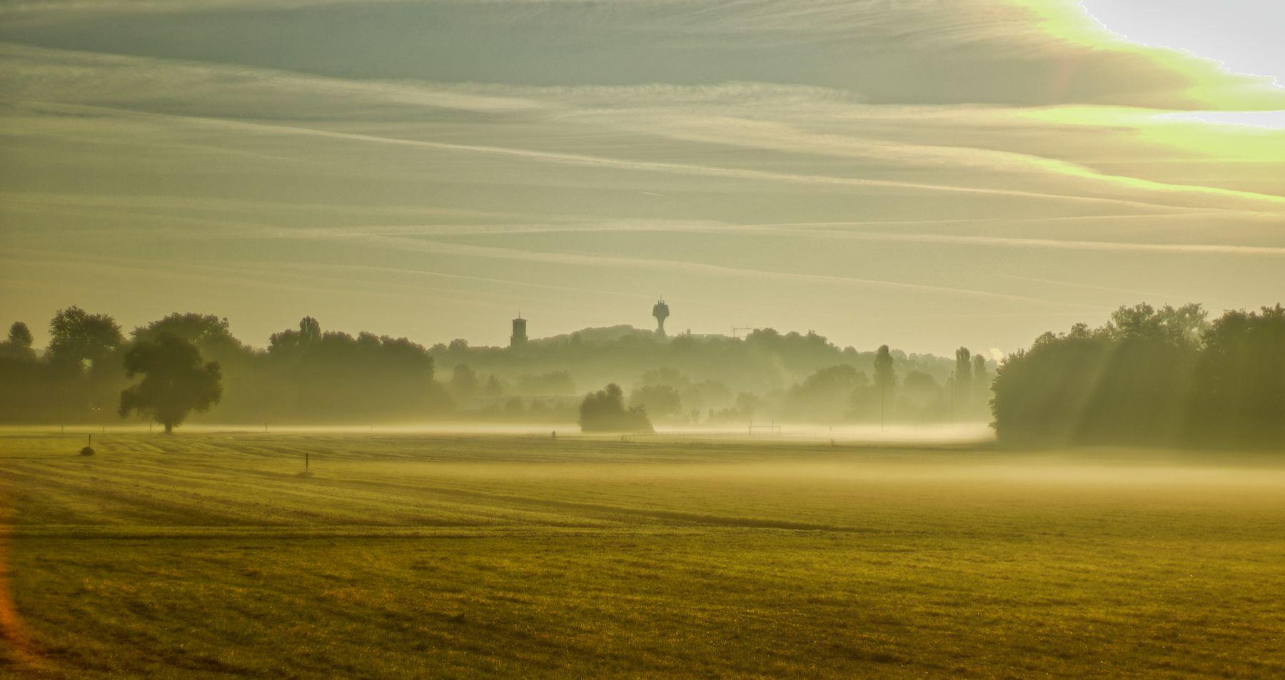 утро утро туман поле