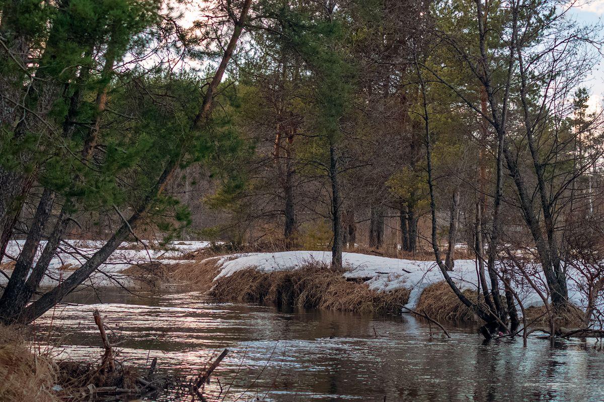 река Номжа номжа река природа пейзаж вид вода весна половодье