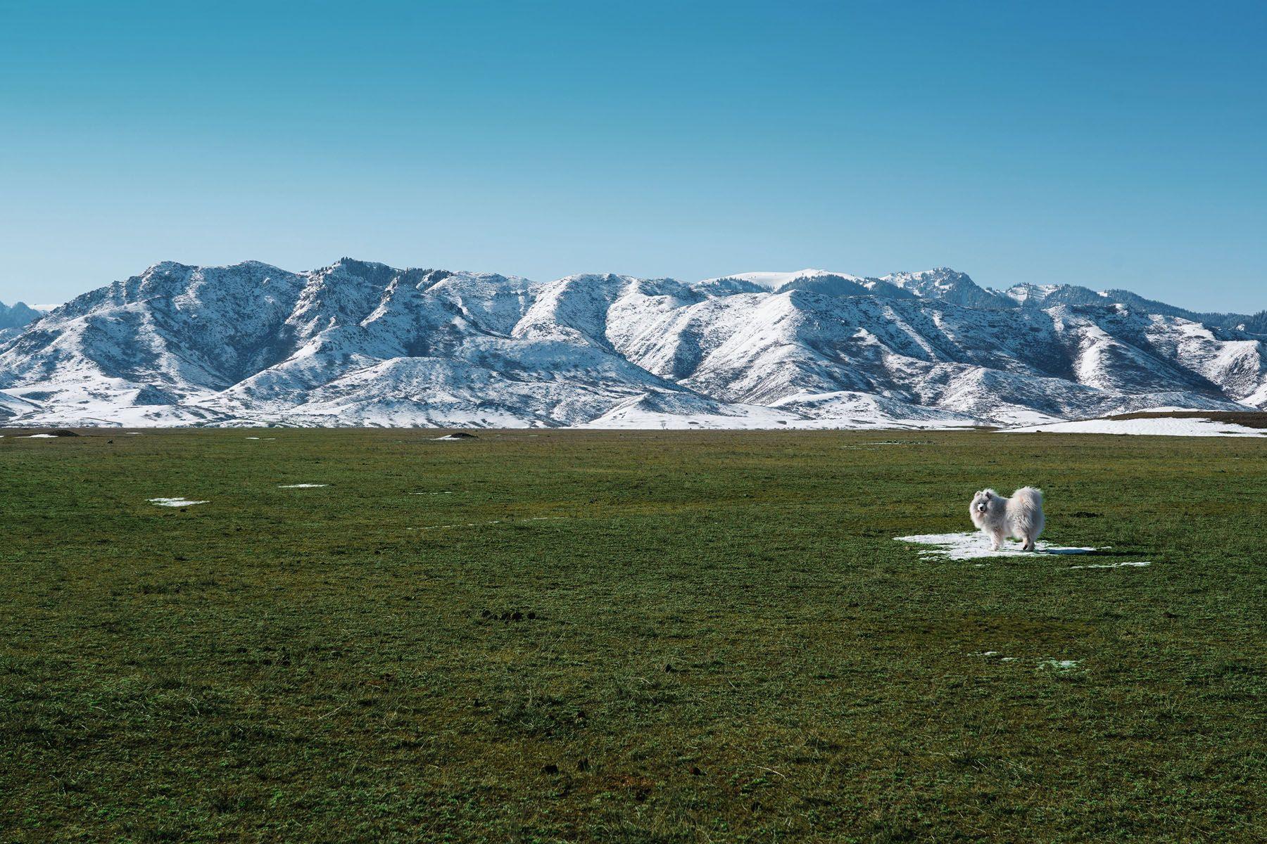 Последний снег в степи - Казахстан