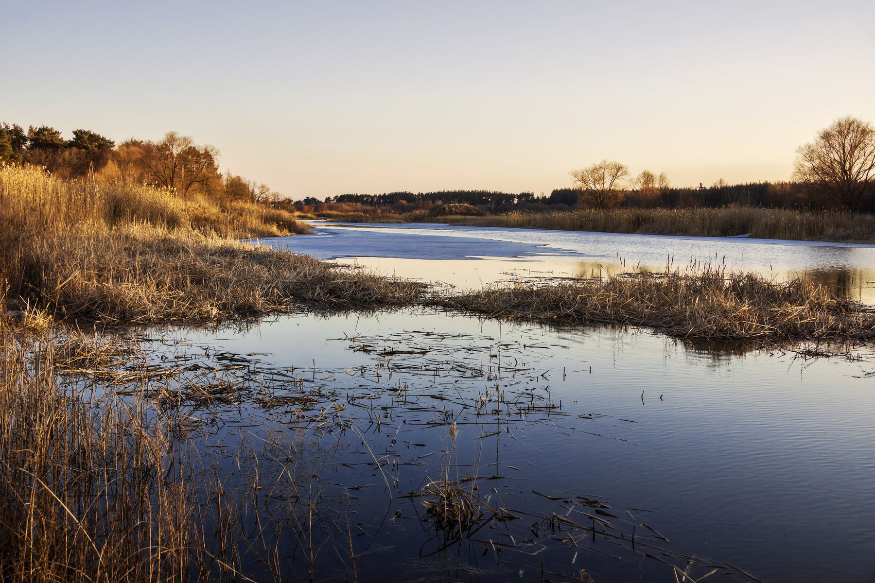 Вечерний свет на весенней реке пейзаж природа весна вечер река Усманка закат лес пригород Воронеж