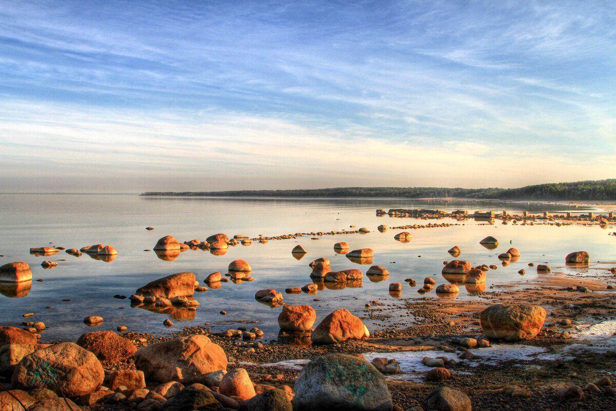 Синева Финский залив