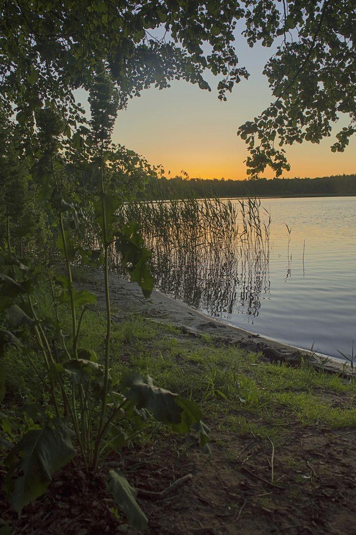 Закат на озере Сегденское Рязанская область оз Сегденское деревья закат вода