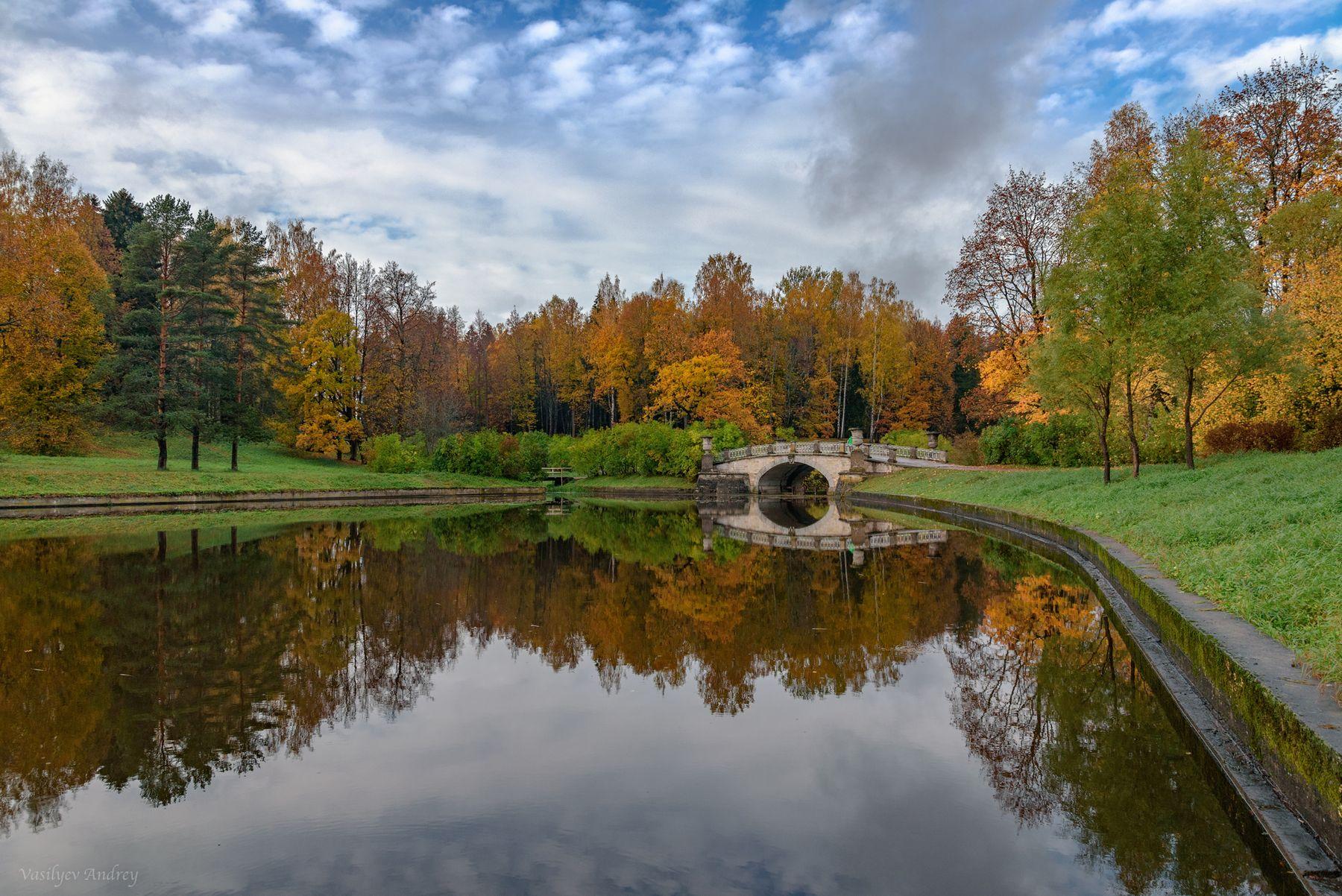 На пруду осень река природа пейзаж отражение