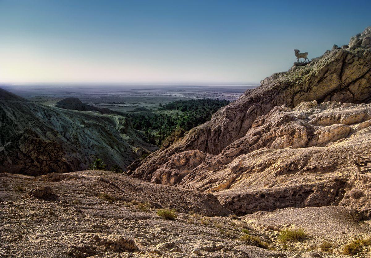 ***В горах Атласа ,южный Тунис.