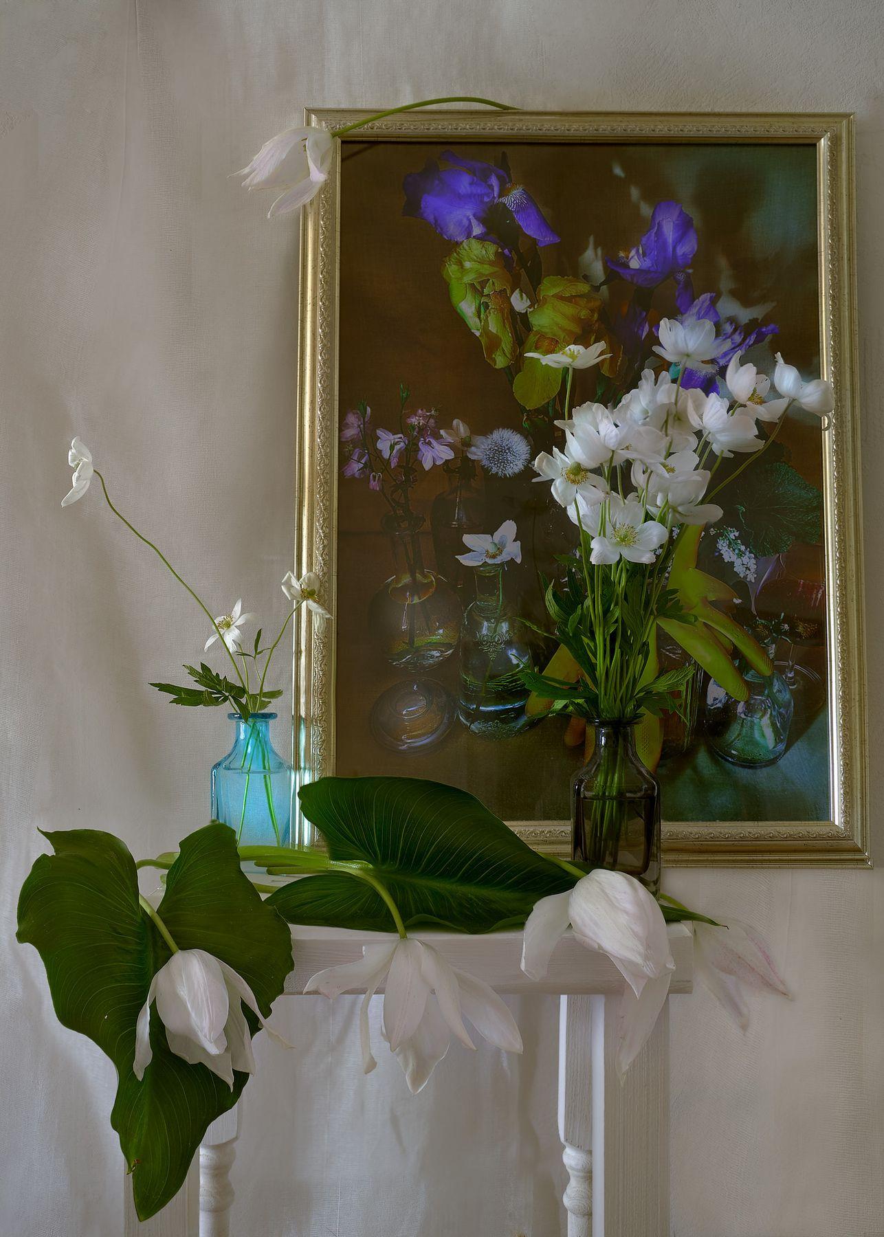 *** цветы натюрморт весна