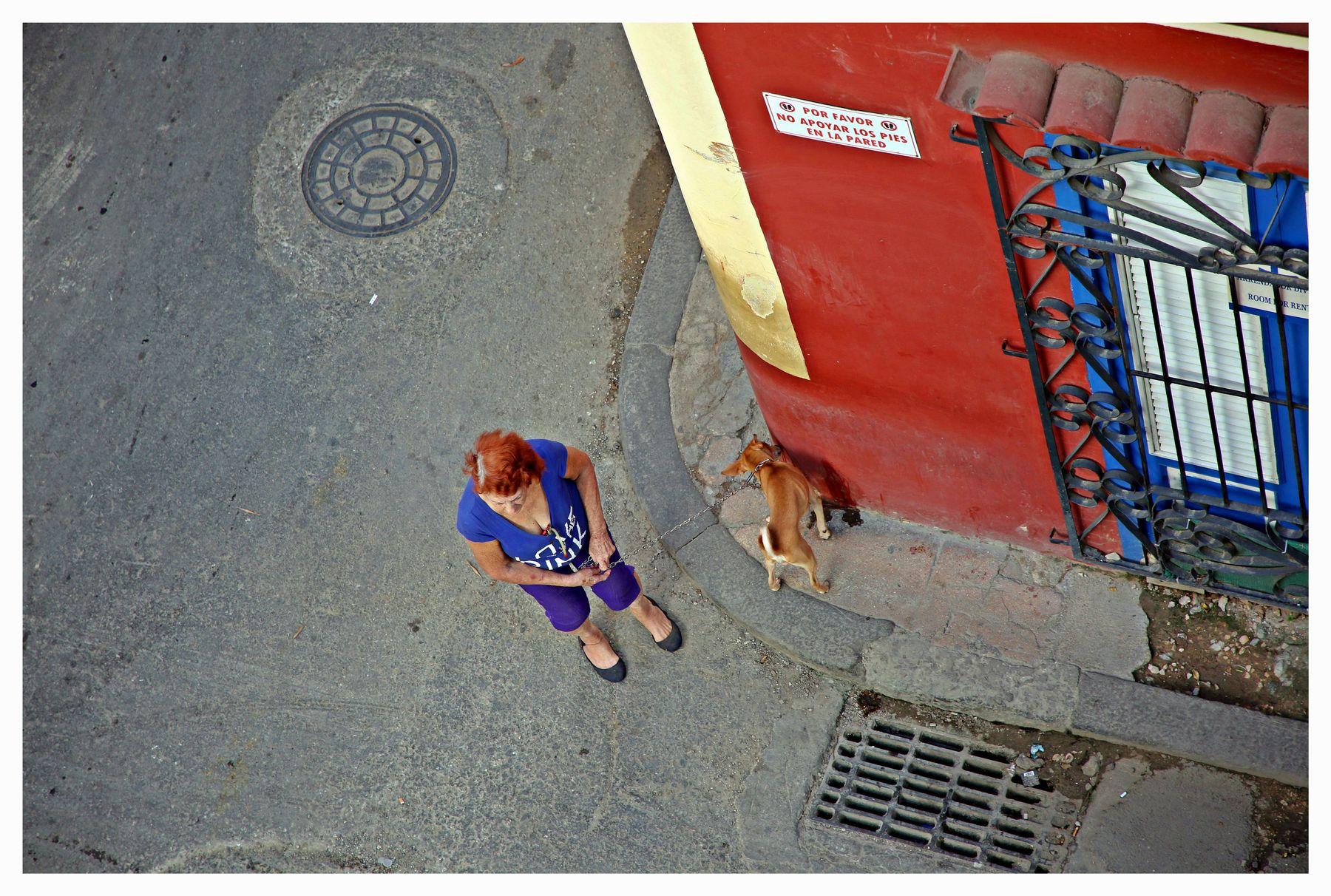 en el balcón aquel cuba la habana vieja libre isla bonita cubanos perro
