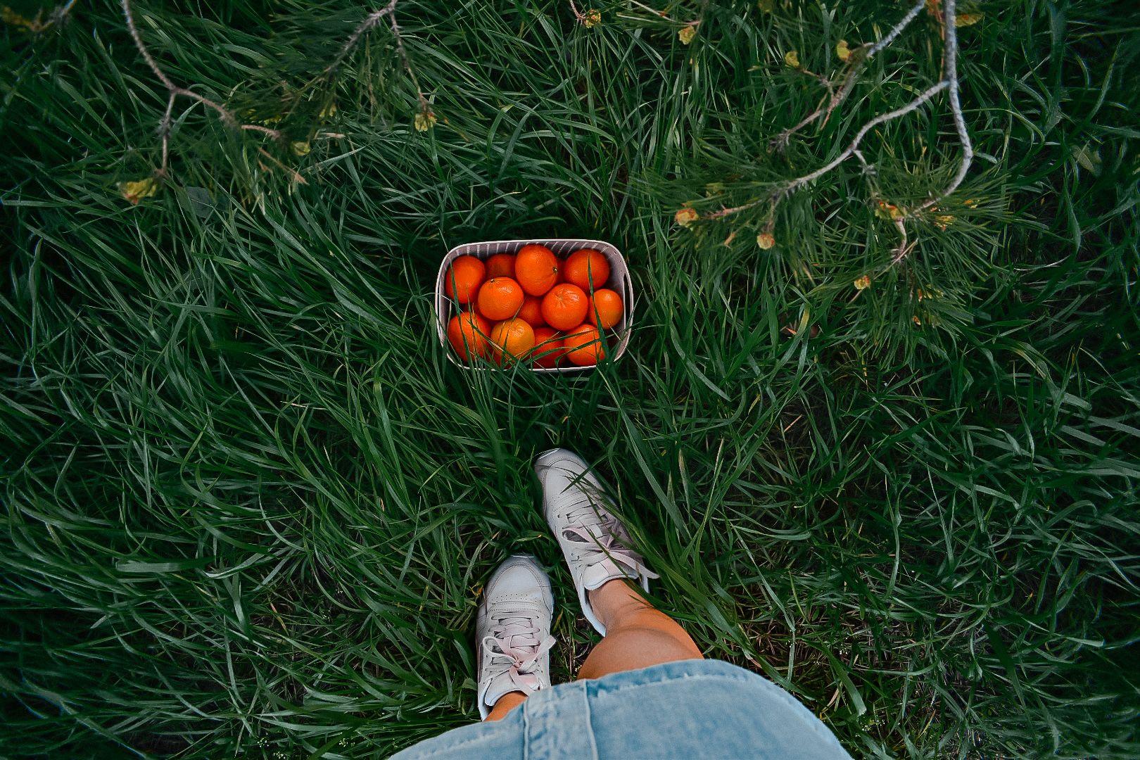 Мандариновый день мандарины май reebook nikon ryder весенний день