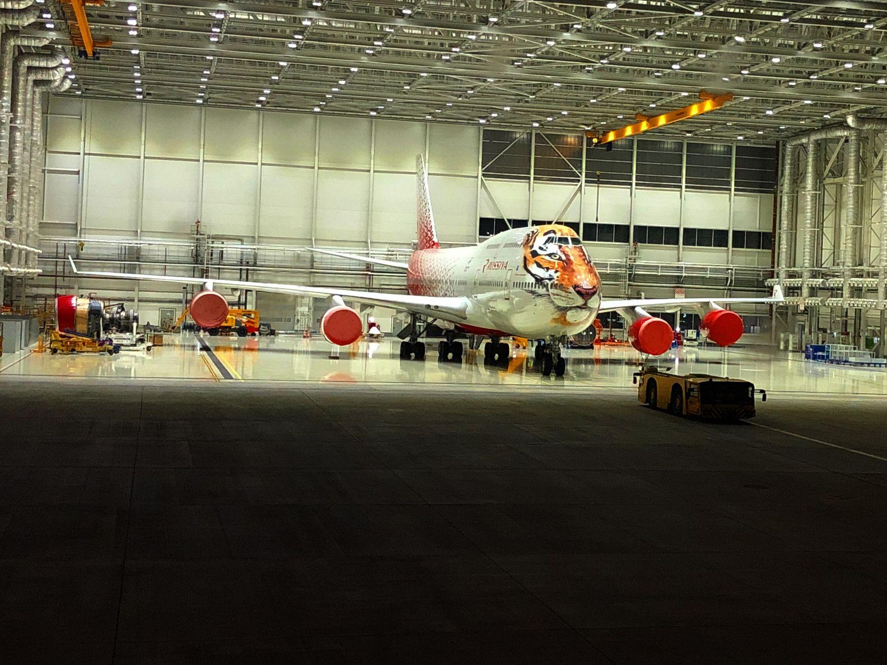 Тигр в клетке Боинг 747 АК Россия