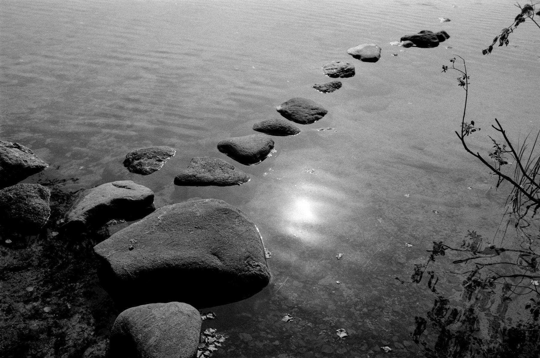 Камни на лесном озере