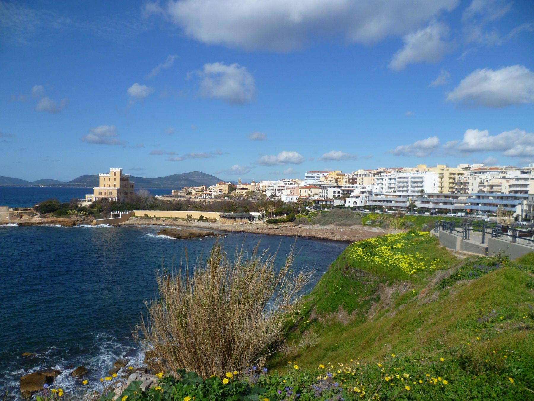 Февраль, все в цвету Сардиния Альгеро февраль цветы море облака