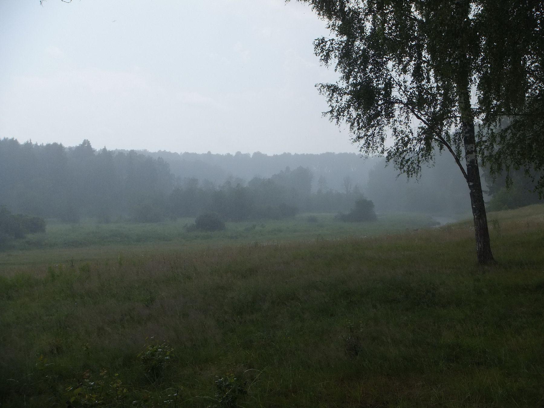 Эти летние дожди
