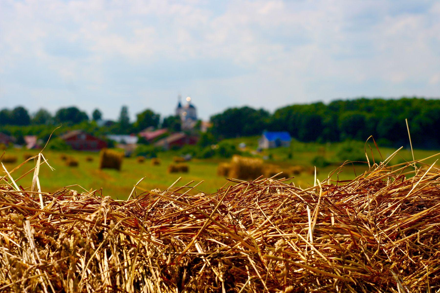 Деревня сено деревня