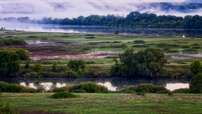 На слиянии двух рек. реки туман утро
