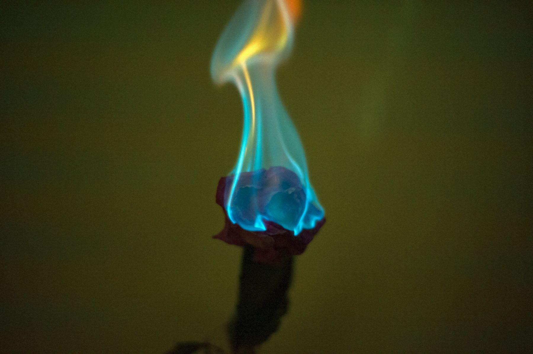 Цветок в огне огонь