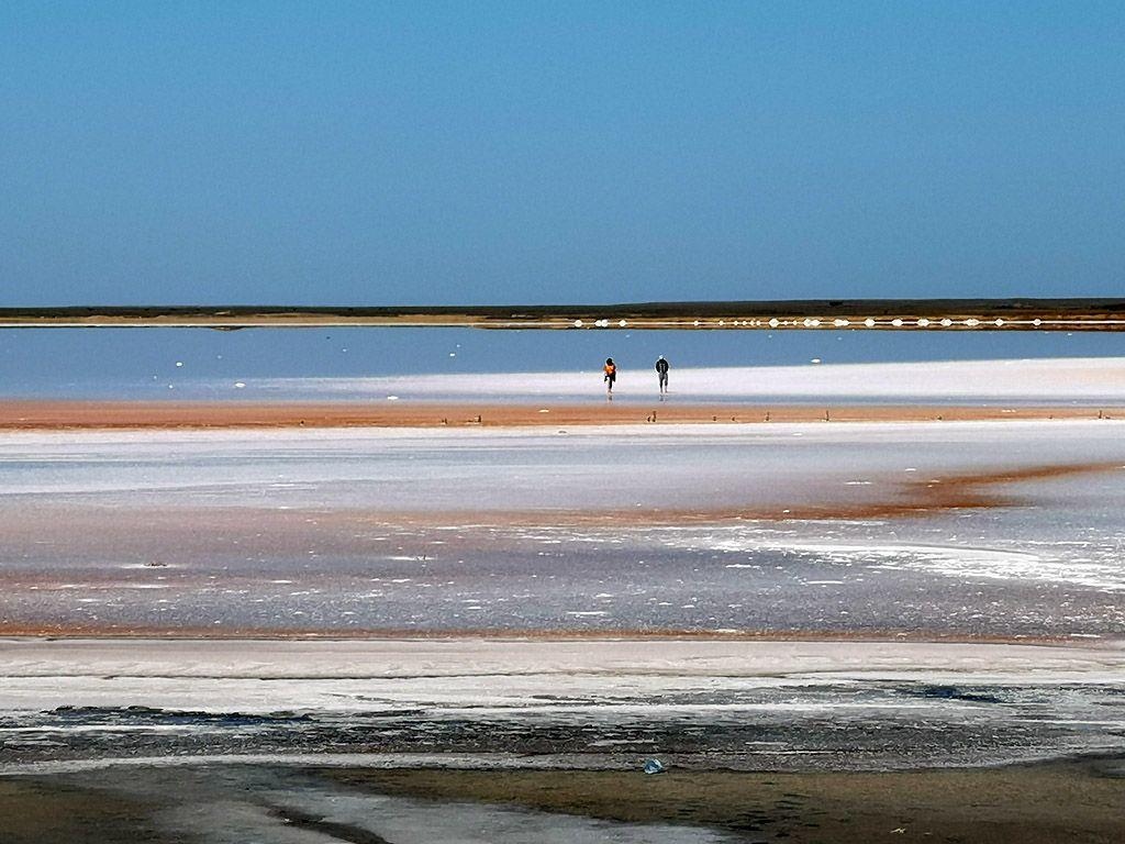 Розовое озеро возле Счастливцево #2