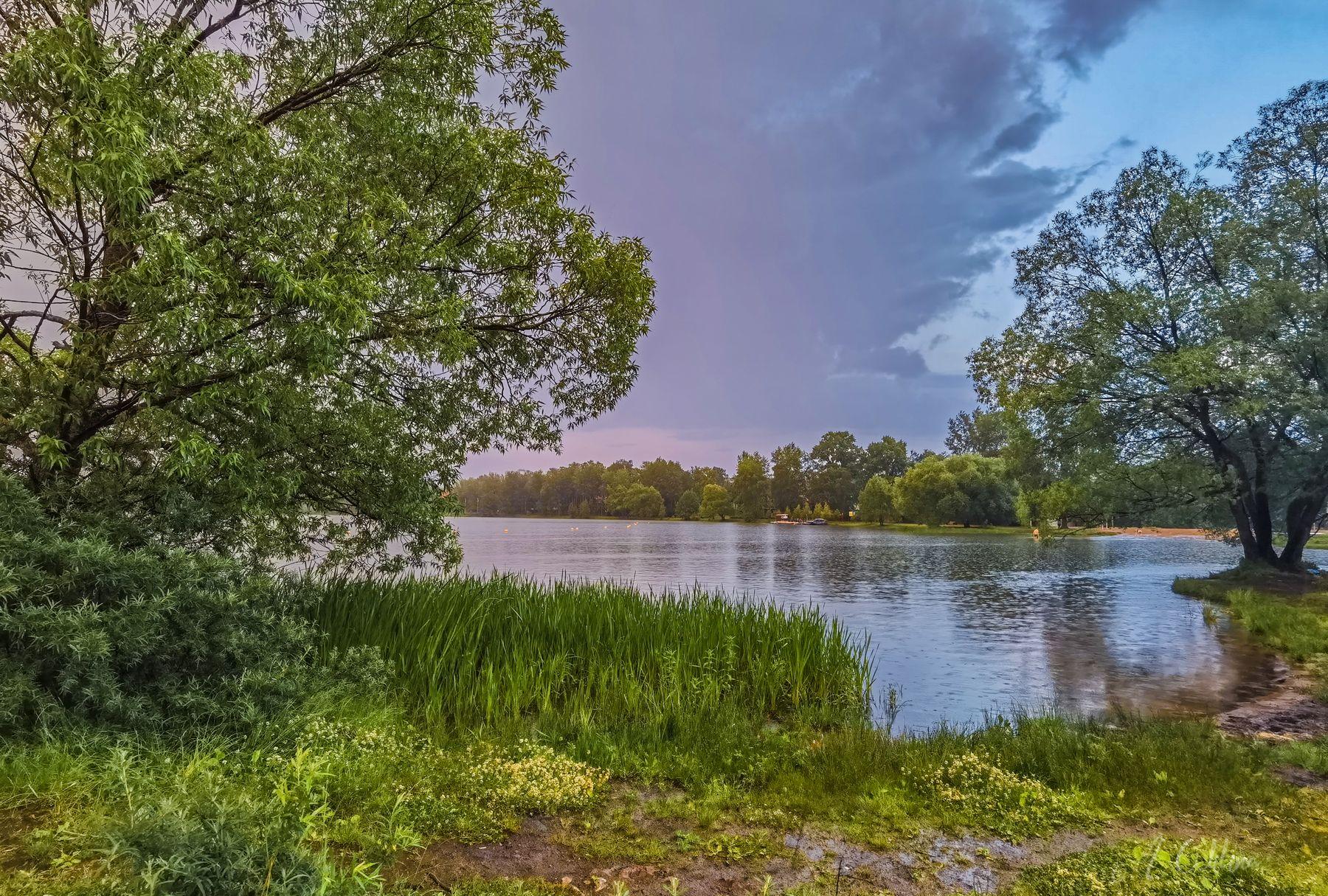 После ливня-2 озеро вечер закат тучи облака берег трава ивы лес
