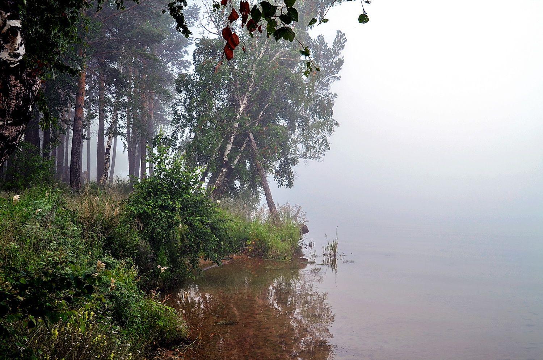 Июльский бережок Иркута река утро туман июль деревья бережок