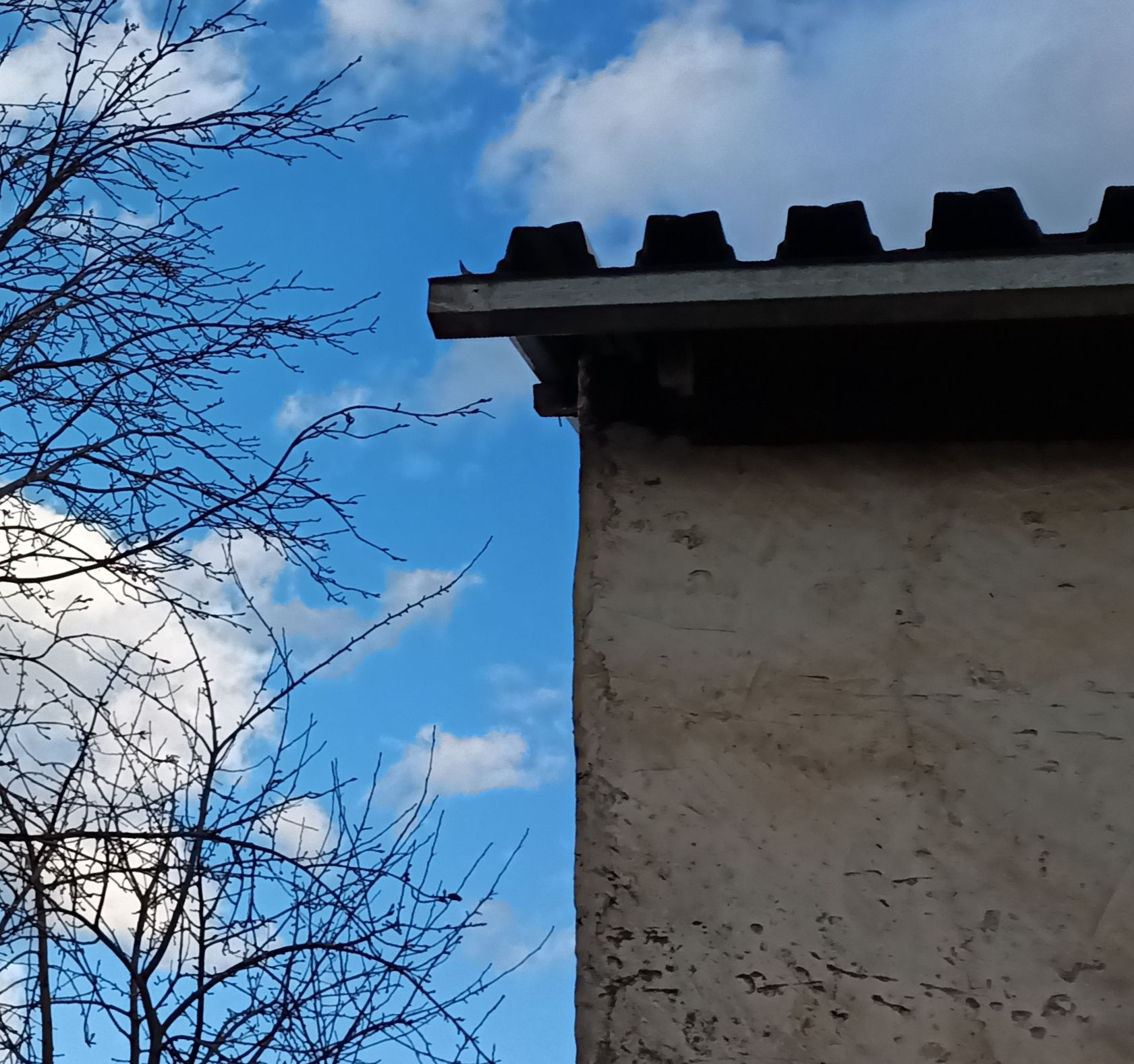 Замок Весна стена крыша дом замок голубое небо белые облака ветви