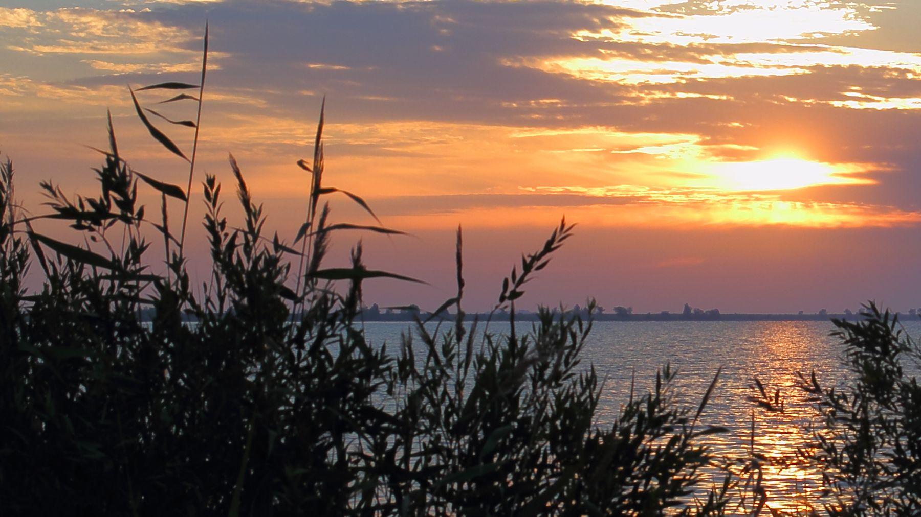 *** закат берег вечер камыш