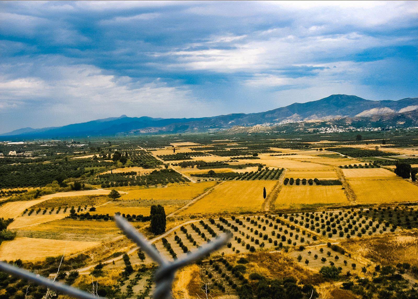 Долина, Крит (12.06.2006)