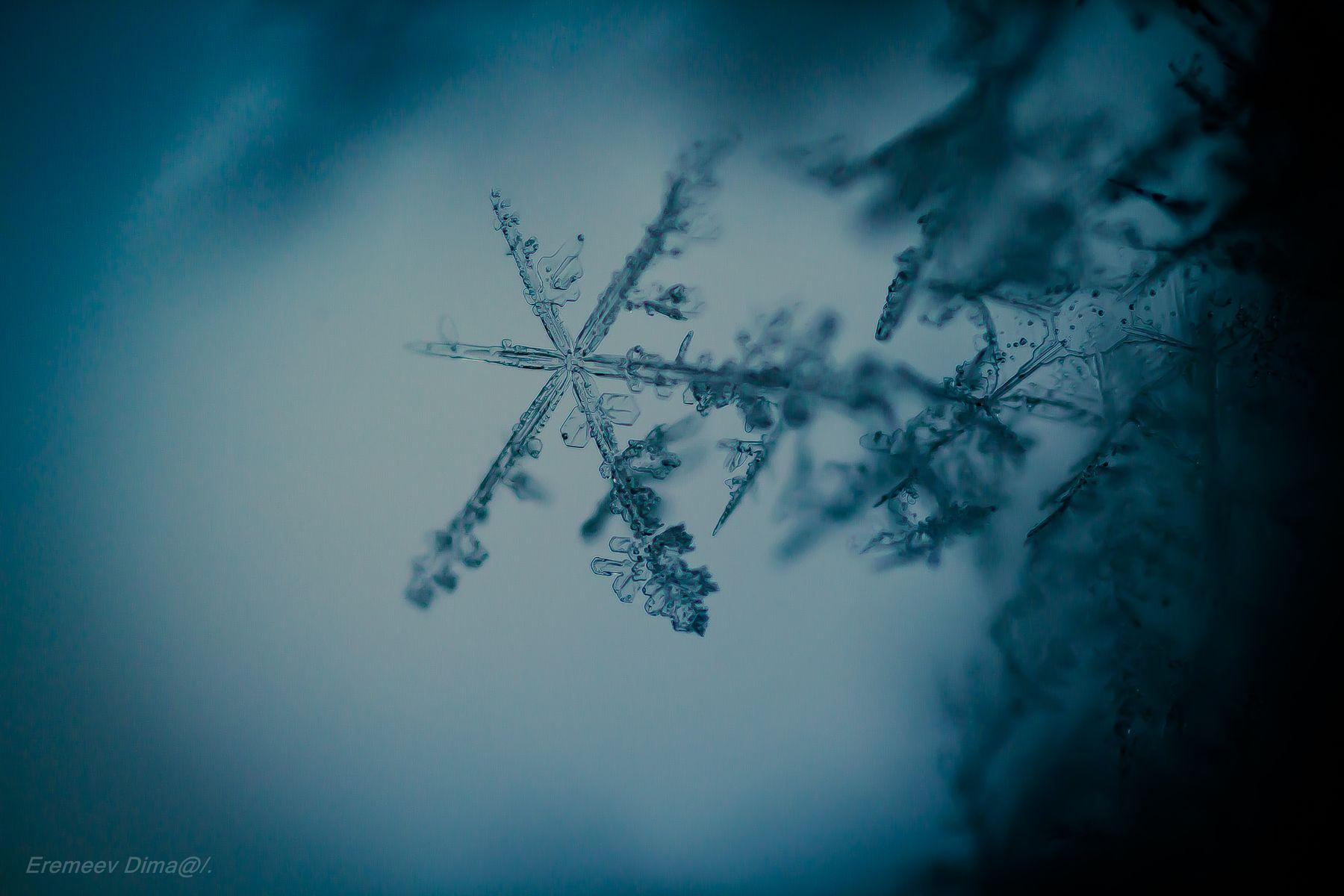Ледяное искусство... снег снежинки вода зима природа