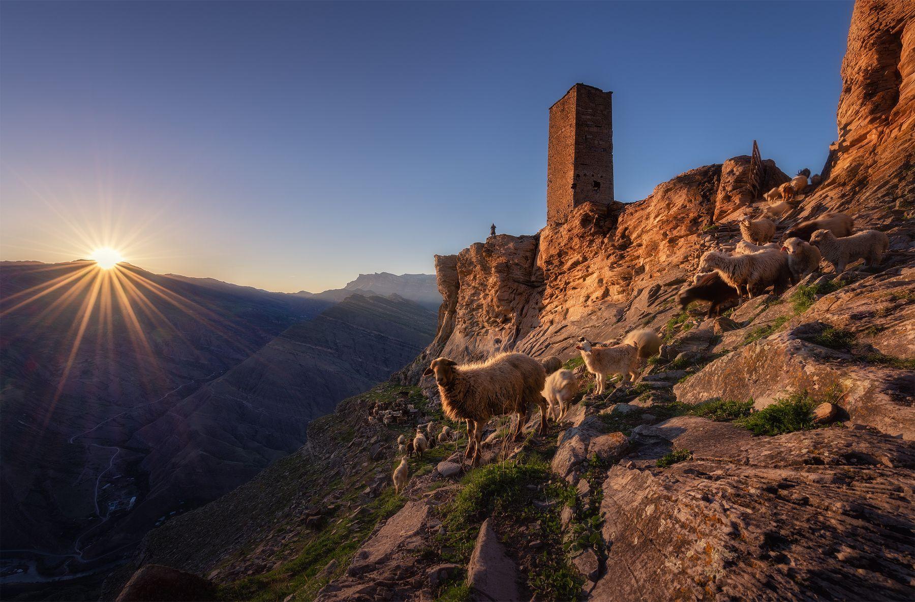Сторожевые башни высокогорного села Гоор Россия Кавказ Дагестан горы пейзаж пейзажироссии природа путешествия Гоор весна