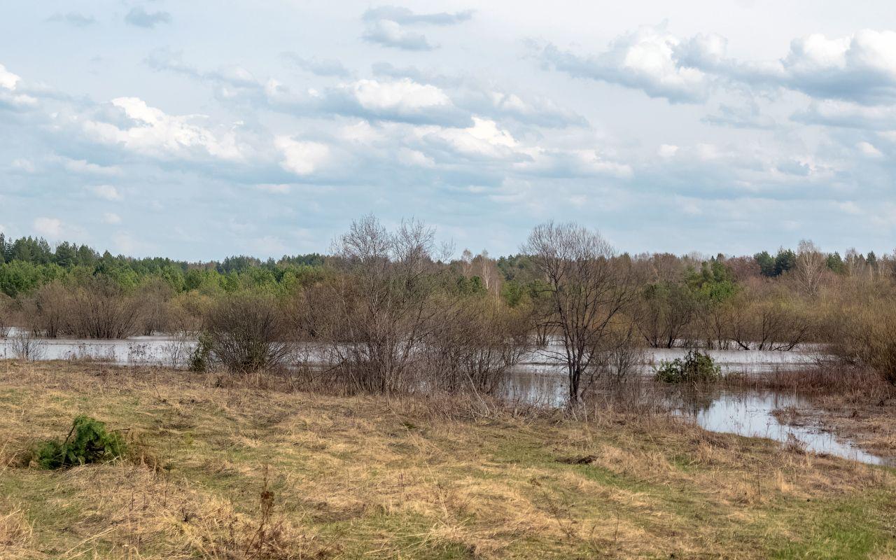 Май 2021 весна природа пейзаж вид вода отдых путешествие солтаново село погост