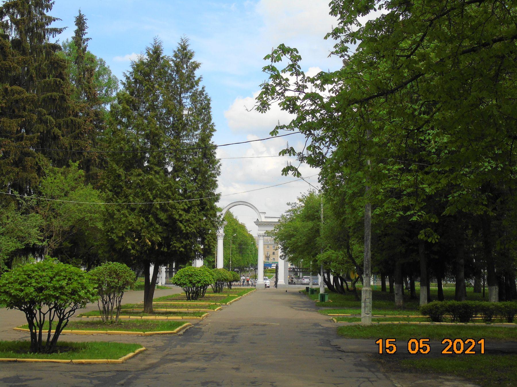 **в парке Коломна Россия москва область.май каштан .природа.город природа парк