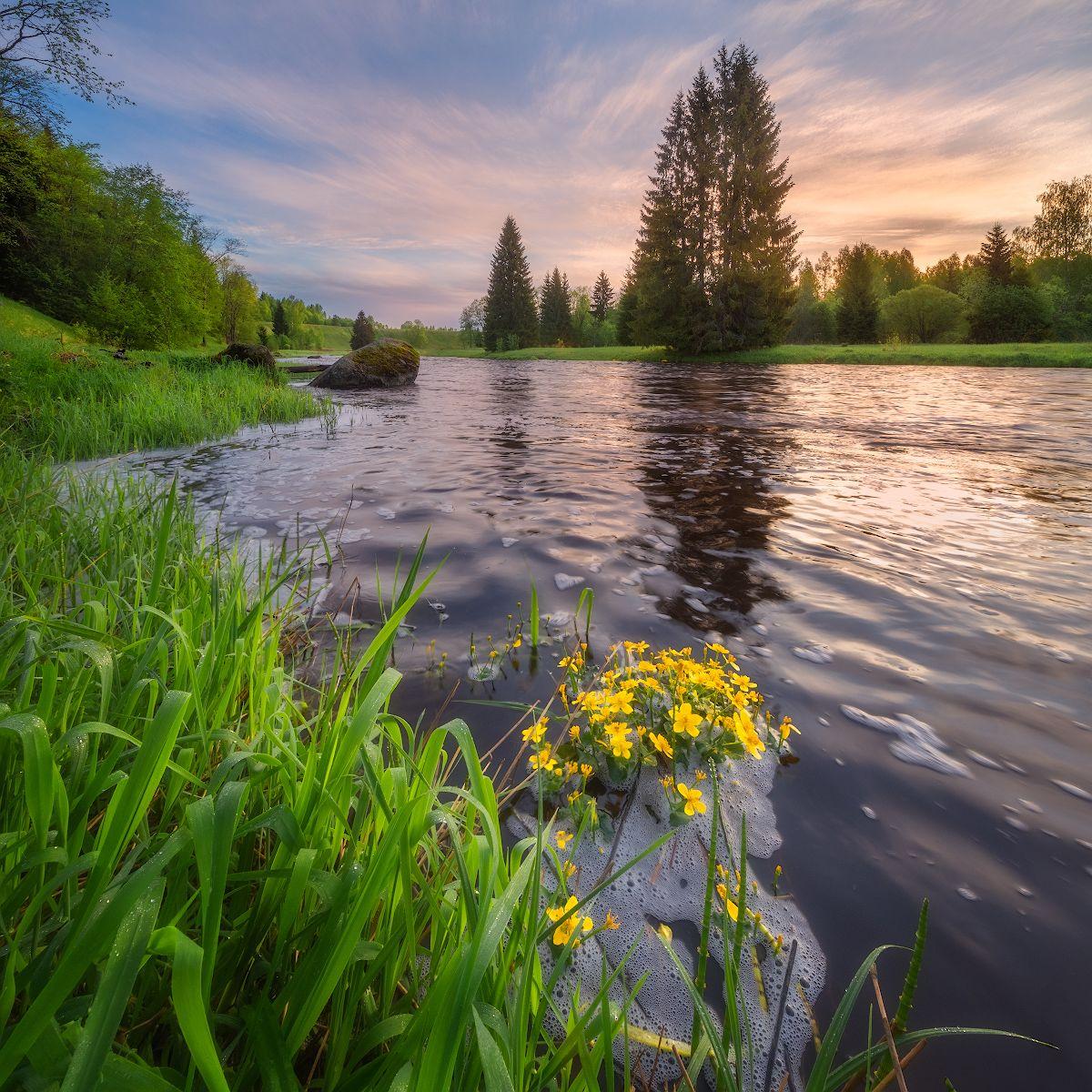 *** рассвет река природа