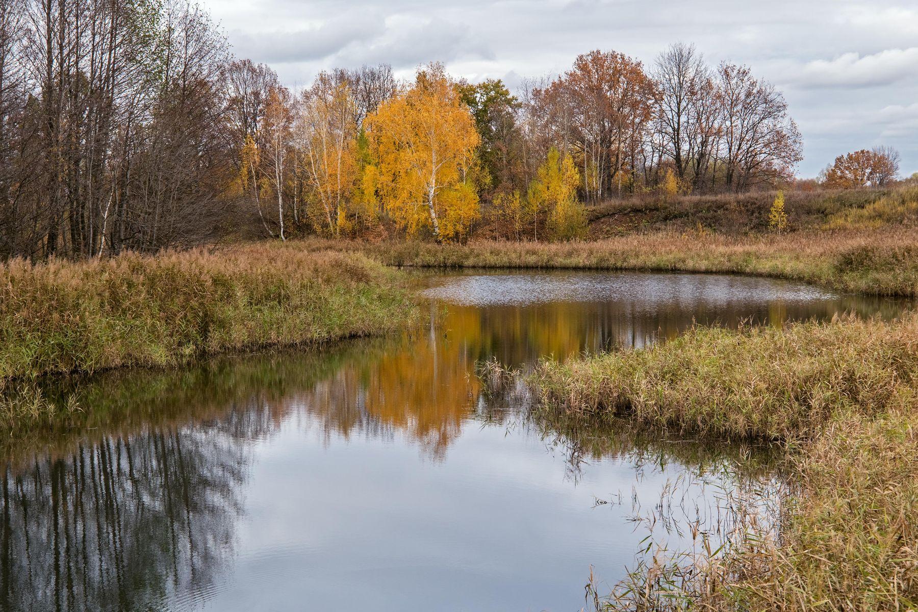 старица р.Казанка природа пейзаж осень река казанка.старица татарстан борисоглебское