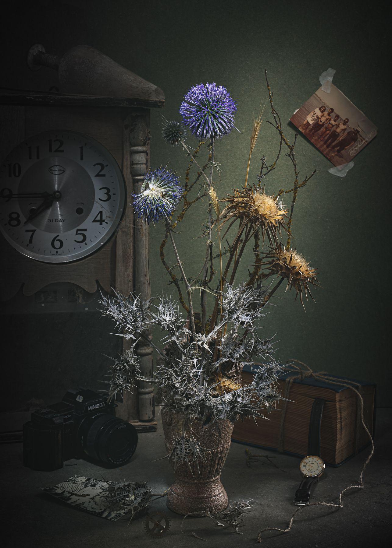 Этажи жизни. Натюрморт часы книга цветы сухие концептуальное фотографии