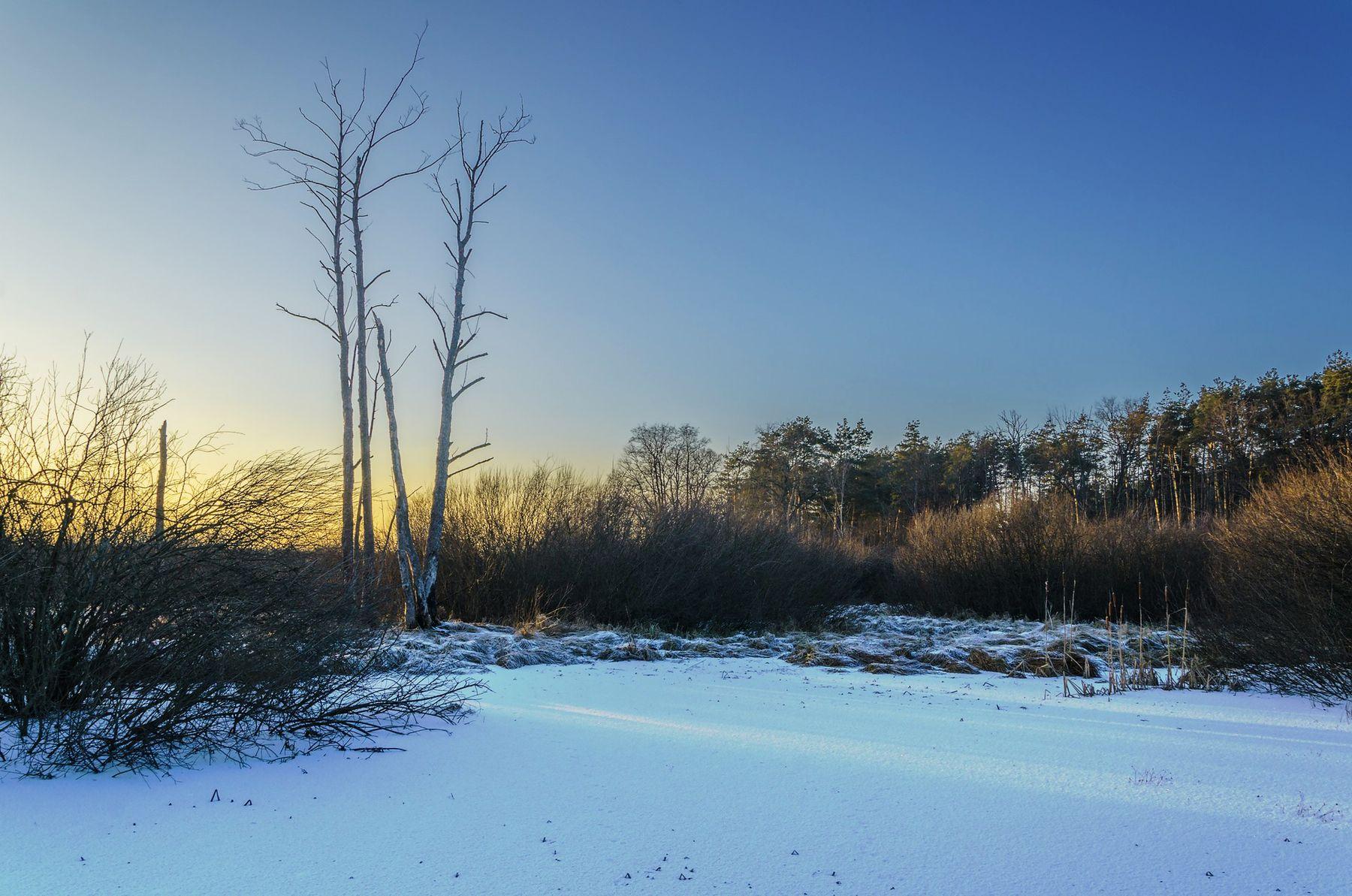 Морозный закат зима мороз закат болото старица пейзаж природа