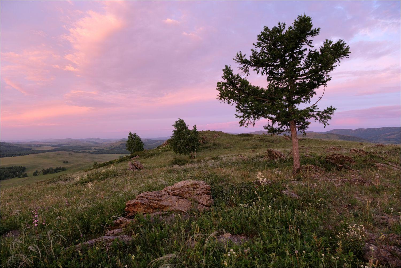 *** лето озеро банное холмы облака лиственница утро рассвет свет башкирия южный урал пейзаж природа