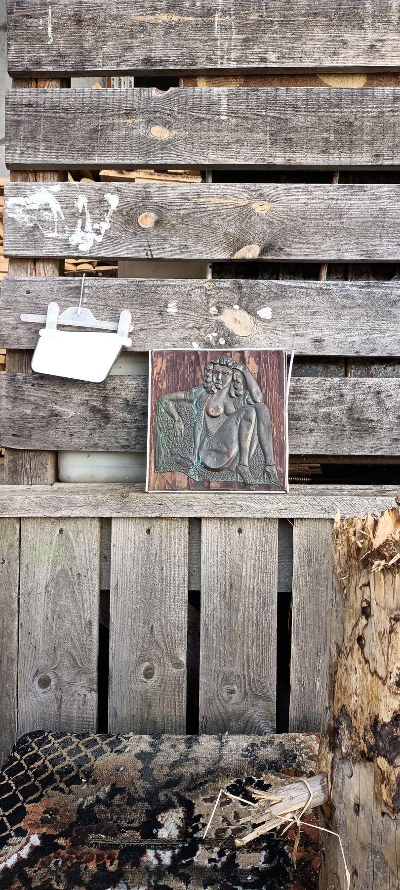 *** Забор доски зеркальце зеркало подвесное портрет картина женщины фотопозирование модель натурщица натура щели