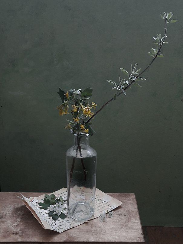 Зеленоватый ветки цветы смородины письмо