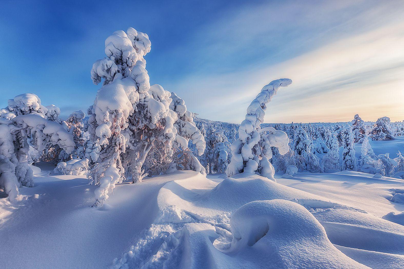 Гора Волосная, Кольский полуостров Кольский Волосная Кандалакша Заполярье