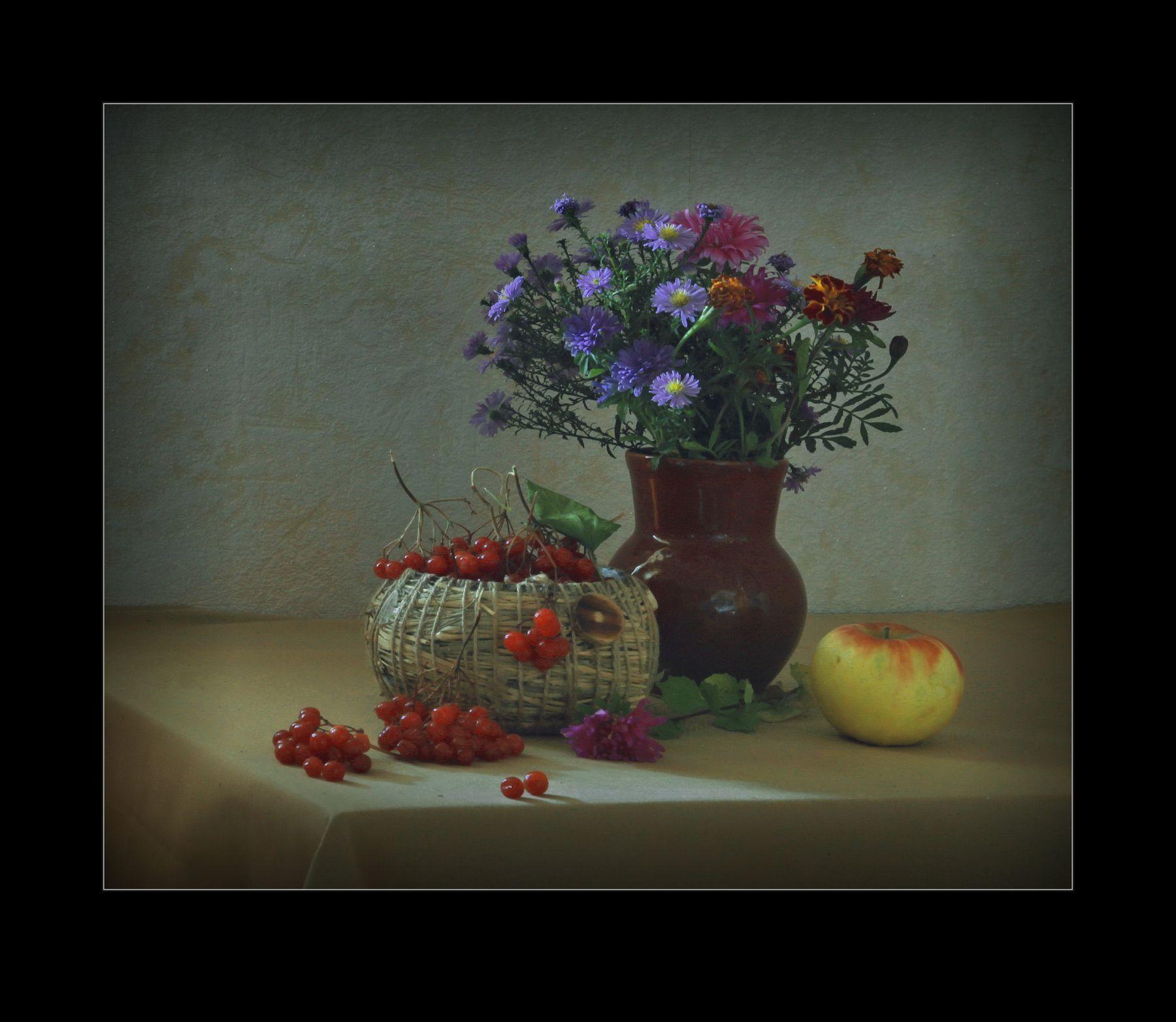 Калина красная.... натюрморт жанр фотография композиция свет