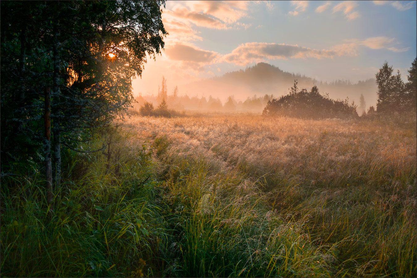 Встречая рассвет Пейзаж рассвет утро туман