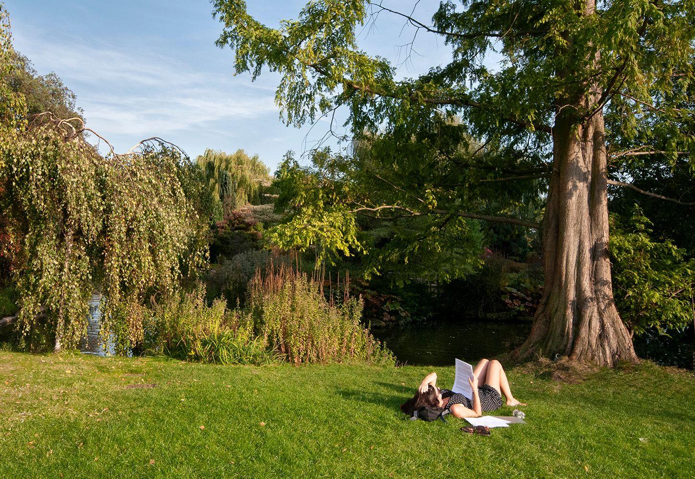 Занятия на траве... Лондон Риджентс-Парк