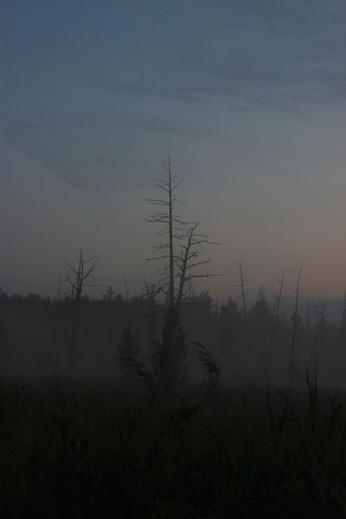 Туман после пожара.
