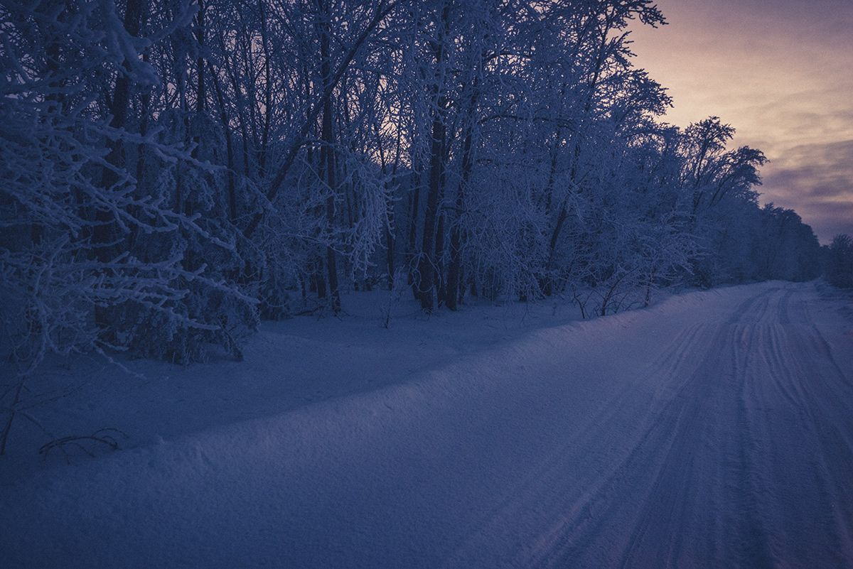 Дорога домой... Зима ночь дорога