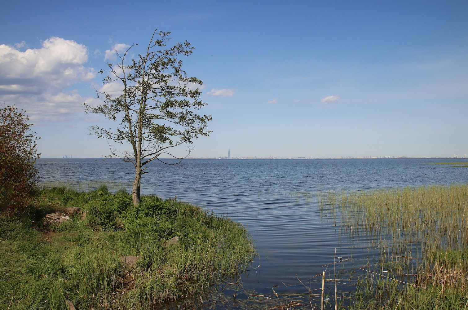 Балтийский берег Петергоф усадьба Знаменка Финский залив май