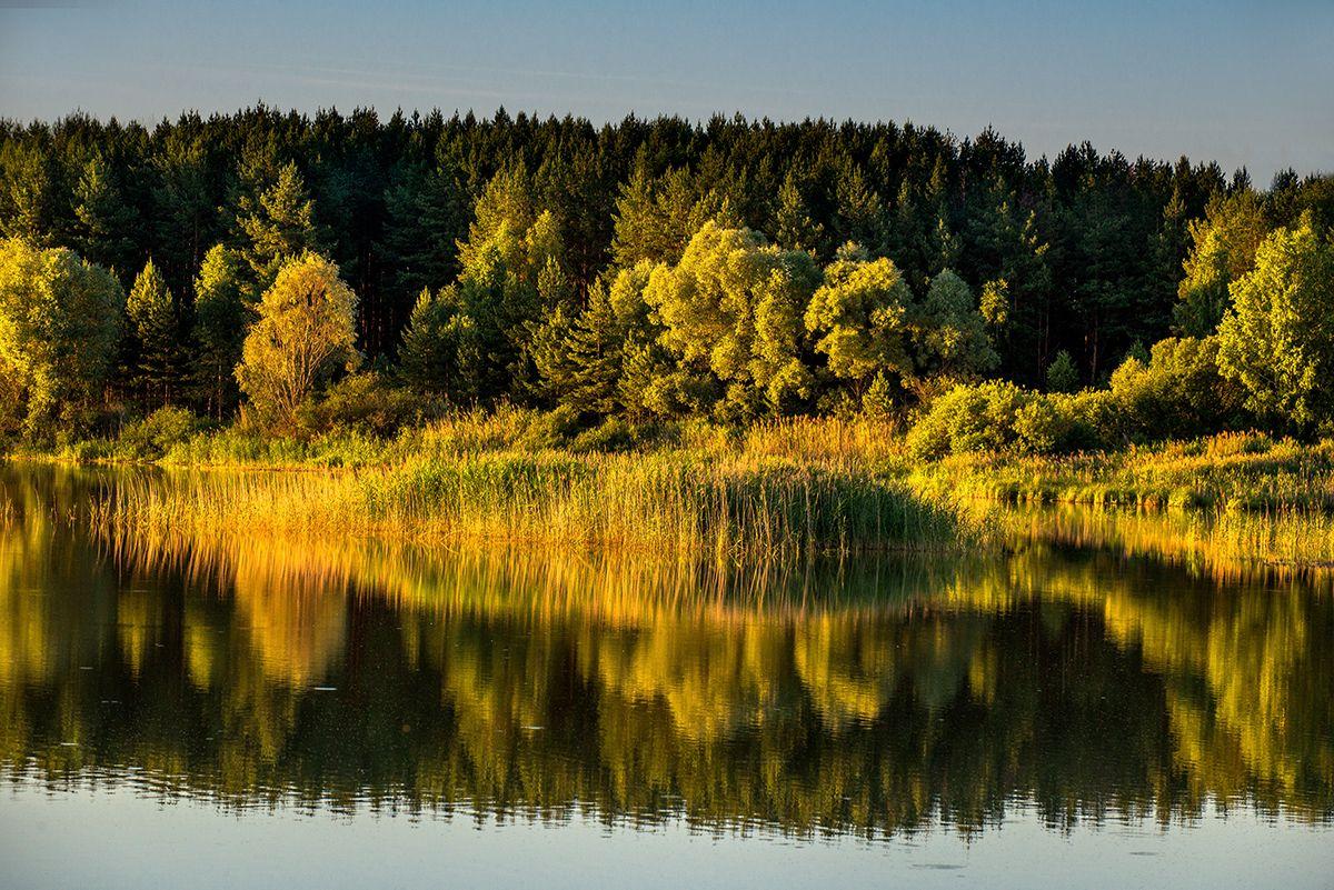 Озеро... Лето июнь озеро