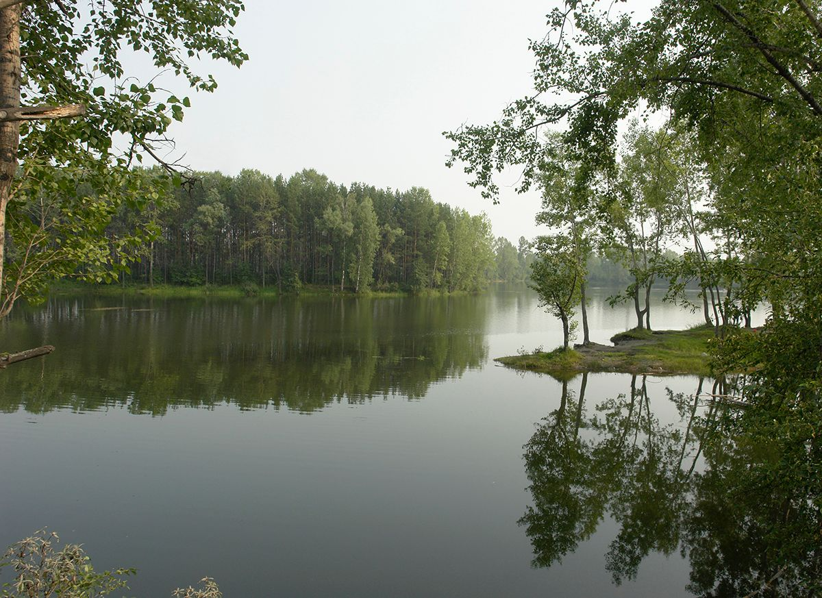 Тишина лес озеро природа пейзаж