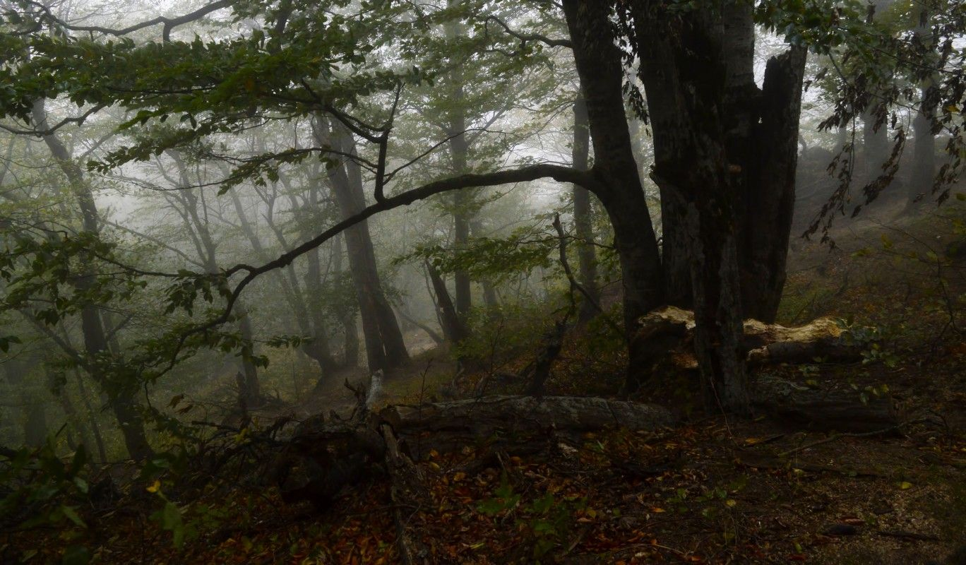 Кавказская осень.....