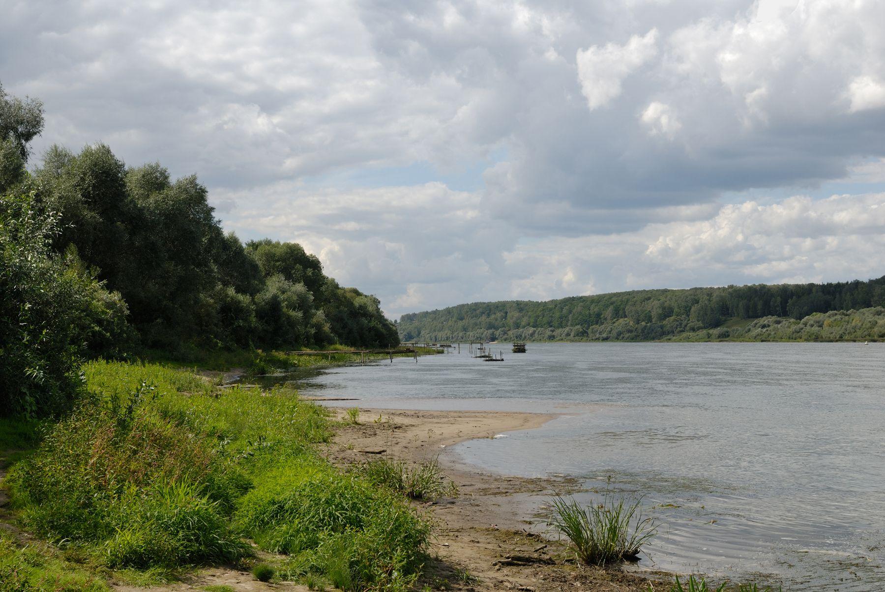 Ока в Поленово Россия Тульская область Поленово пейзаж Ока лето