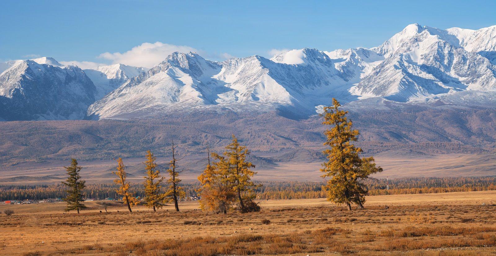 На просторах Алтая просторы алтай курай северо-чуйский степь осень горы