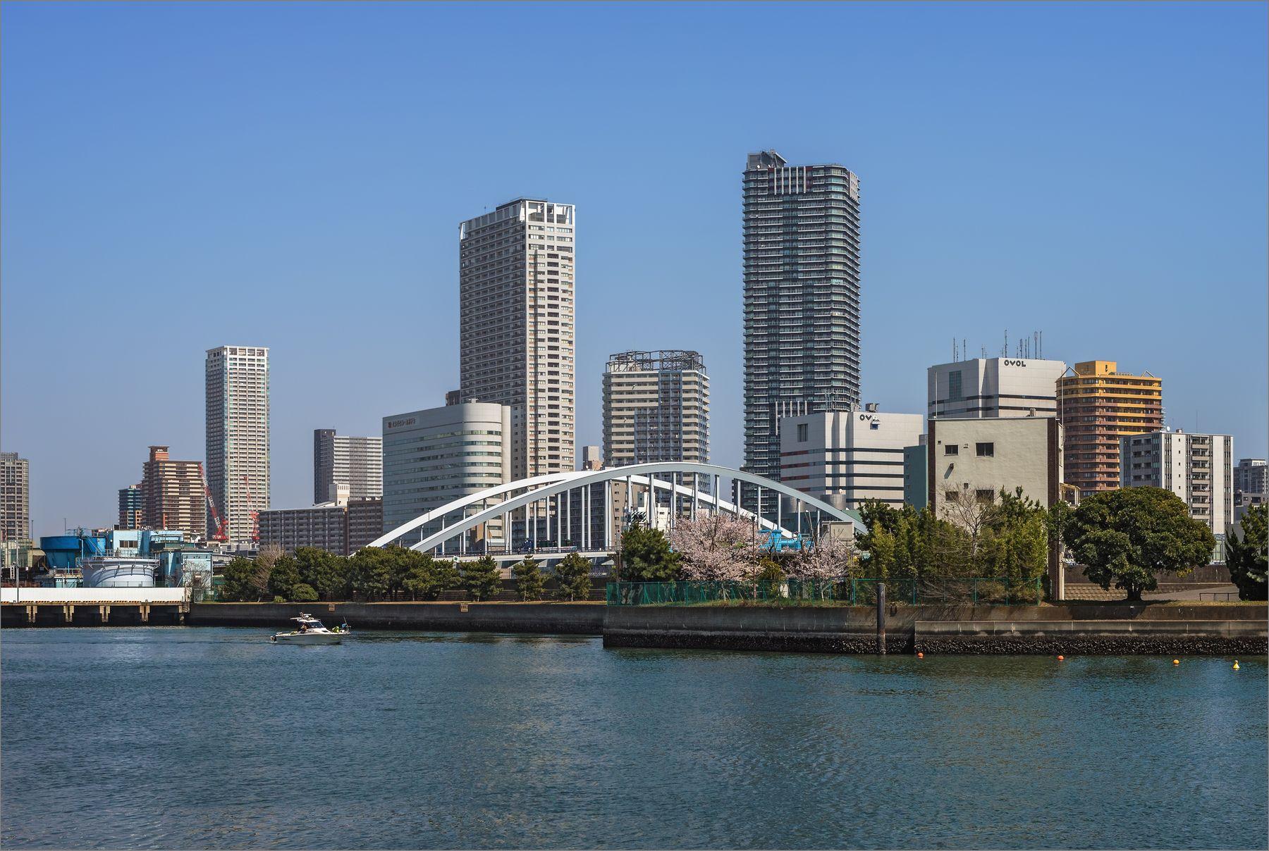 Устье реки Сумида, впадающей в Токийский залив река Токио