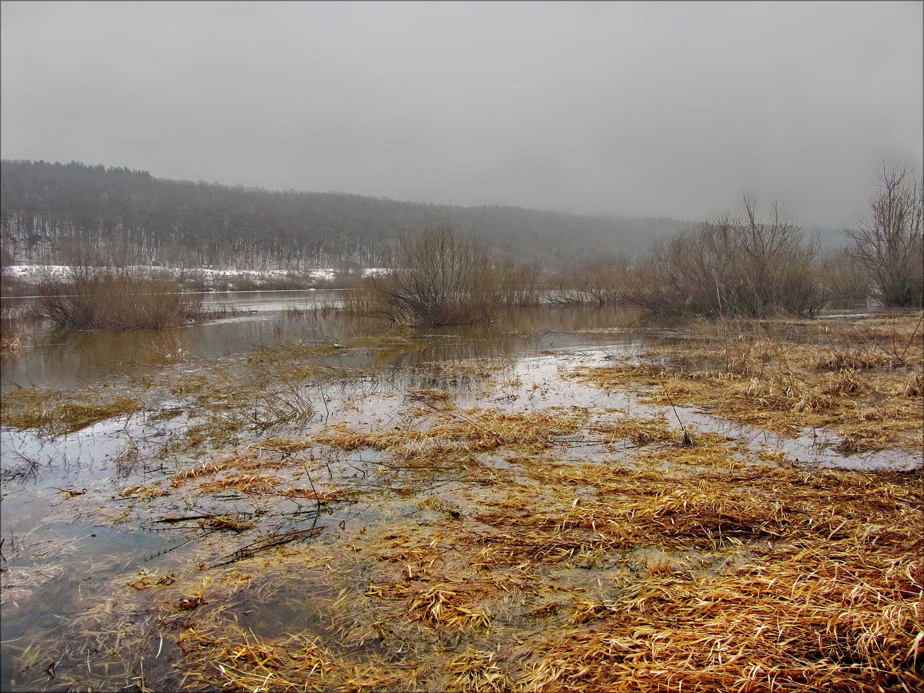 Весеннее подтопление утро пасмурно туман река берега